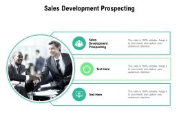 Sales Development Prospecting Ppt Powerpoint Presentation Portfolio Rules Cpb