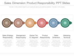 Sales Dimension Product Responsibility Ppt Slides