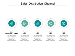 Sales Distribution Channel Ppt Powerpoint Presentation Layouts Examples Cpb