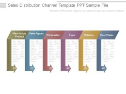 Sales Distribution Channel Template Ppt Sample File
