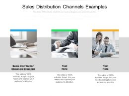 Sales Distribution Channels Examples Ppt Powerpoint Presentation Summary Files Cpb