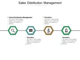 Sales Distribution Management Ppt Powerpoint Presentation File Example Topics Cpb