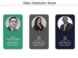 Sales Distribution Model Ppt Powerpoint Presentation Inspiration Portfolio Cpb
