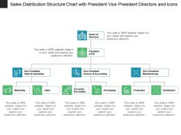 Sales Distribution Structure Chart With President Vice President Directors And Icons