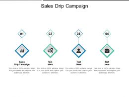 Sales Drip Campaign Ppt Powerpoint Presentation File Outline Cpb
