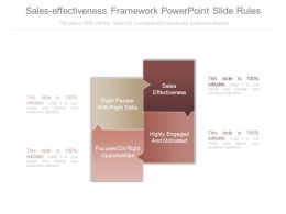 Sales Effectiveness Framework Powerpoint Slide Rules