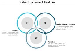 Sales Enablement Features Ppt Powerpoint Presentation Gallery Model Cpb