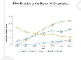 Sales Evolution Of Key Brands For Organization