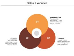 Sales Executive Ppt Powerpoint Presentation Gallery Sample Cpb