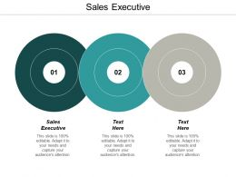 Sales Executive Ppt Powerpoint Presentation Infographic Template Microsoft Cpb