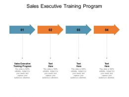 Sales Executive Training Program Ppt Powerpoint Presentation Show Background Cpb