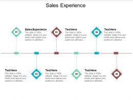 Sales Experience Ppt Powerpoint Presentation Summary Mockup Cpb