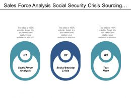 Sales Force Analysis Social Security Crisis Sourcing Procurement Cpb