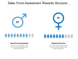 Sales Force Assessment Rewards Structure Process Modeling Interface