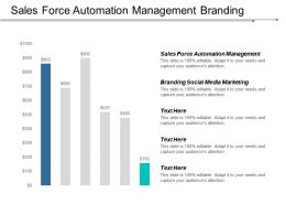 Sales Force Automation Management Branding Social Media Marketing Cpb
