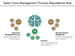 Sales Force Management Process Reputational Risk Management Turnover Retention Cpb