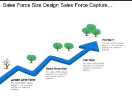 Sales Force Size Design Sales Force Capture Manager