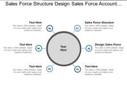 Sales Force Structure Design Sales Force Account Segmentation