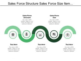 Sales Force Structure Sales Force Size Item Substitution