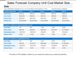 Sales Forecast Company Unit Cost Market Size Share Operating Income