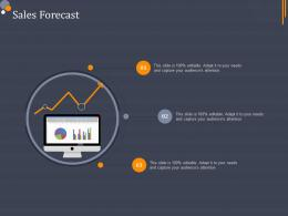 Sales Forecast Product Category Attractive Analysis Ppt Diagrams