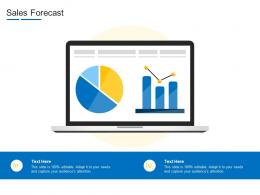 Sales Forecast Product Channel Segmentation Ppt Topics