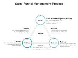 Sales Funnel Management Process Ppt Powerpoint Presentation File Graphics Cpb