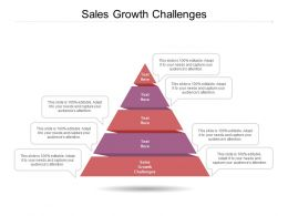 Sales Growth Challenges Ppt Powerpoint Presentation Portfolio Example File Cpb