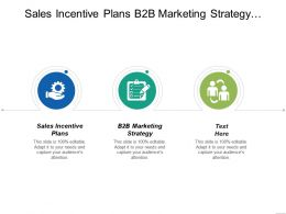 Sales Incentive Plans B2b Marketing Strategy Dynamic Leadership Cpb