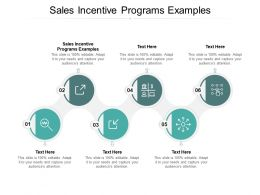Sales Incentive Programs Examples Ppt Powerpoint Presentation Pictures Files Cpb