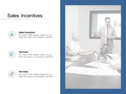 Sales Incentives Ppt Powerpoint Presentation Show Tips Cpb