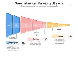 Sales Influencer Marketing Strategy Ppt Powerpoint Presentation Infographics Example Cpb
