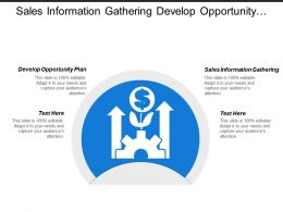 Sales Information Gathering Develop Opportunity Plan Installation Training