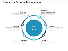 Sales Key Account Management Ppt Powerpoint Presentation Ideas Guide Cpb