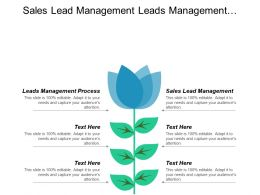 Sales Lead Management Leads Management Process Marketing Management Process Cpb