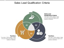 Sales Lead Qualification Criteria Ppt Powerpoint Presentation Infographic Styles Cpb