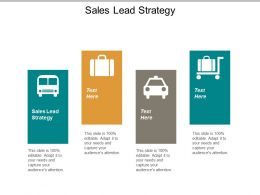 Sales Lead Strategy Ppt Powerpoint Presentation Inspiration Infographics Cpb