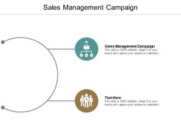 Sales Management Campaign Ppt Powerpoint Presentation File Vector Cpb