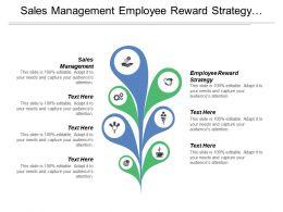 Sales Management Employee Reward Strategy Financial Plan Finances Management