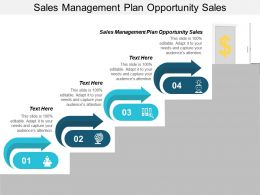 Sales Management Plan Opportunity Sales Ppt Powerpoint Presentation File Layout Cpb