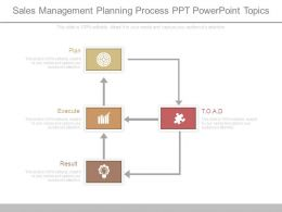 Sales Management Planning Process Ppt Powerpoint Topics