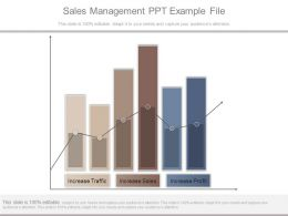 Sales Management Ppt Example File