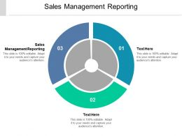 Sales Management Reporting Ppt Powerpoint Presentation Infographics Layouts Cpb