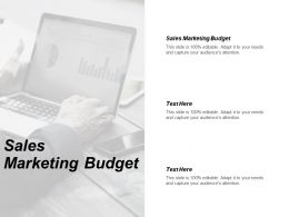 Sales Marketing Budget Ppt Powerpoint Presentation Gallery Show Cpb