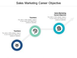 Sales Marketing Career Objective Ppt Powerpoint Presentation Show Information Cpb