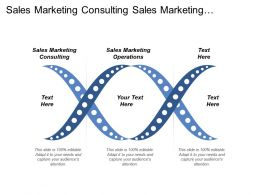 Sales Marketing Consulting Sales Marketing Operations Shell Mergers Acquisitions Cpb