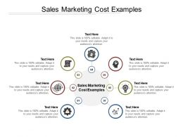 Sales Marketing Cost Examples Ppt Powerpoint Presentation Professional Cpb