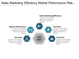 Sales Marketing Efficiency Market Performance Risk Management Methodologies Cpb