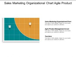 Sales Marketing Organizational Chart Agile Product Management Scrum Cpb