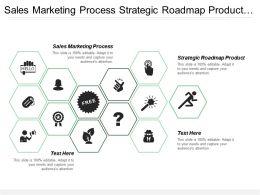 Sales Marketing Process Strategic Roadmap Product Market Segmentation